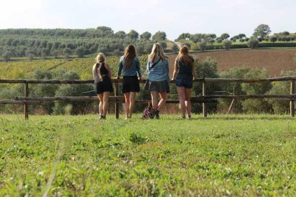 Tuscanmagic Di Dng srl Wine Tour 'Following Wine Roads'  half day