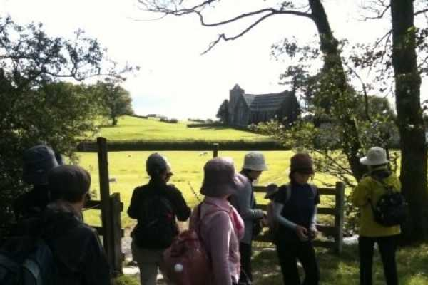 Lake District Tours Private Lakeland Bluebell Tour