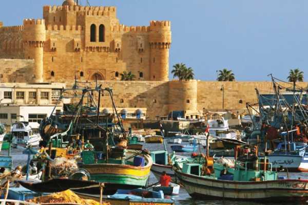EMO TOURS EGYPT Excursión de un día completo a Alejandria