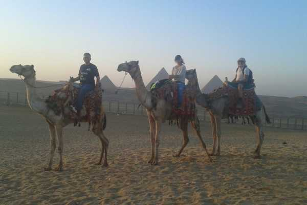 EMO TOURS EGYPT Day Tour to Giza Pyramids by Camel