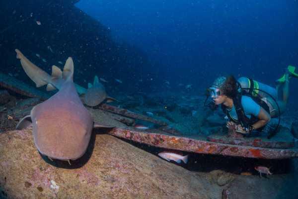 Aquanauts Grenada 5. Nitrox / Enriched Air Diver Course