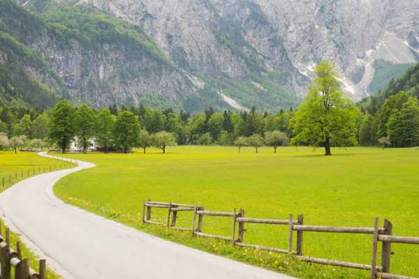 Ride around Alps & Wines Bike Holiday