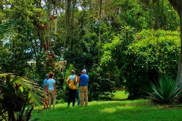 Bogota Henry Tours 12. COFFEE PLANTATION, 8 HOURS PRIVATE TOUR