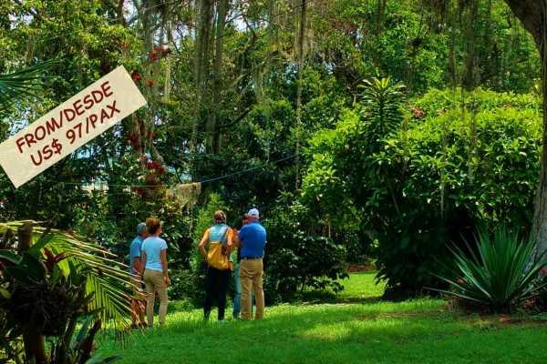 Bogota Henry Tours COFFEE PLANTATION 8 HOURS PRIVATE TOUR