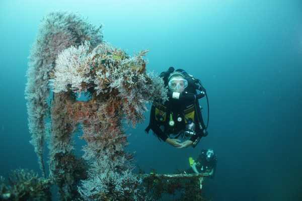 Aquanauts Grenada 8. PADI TEC 40m CCR Diver
