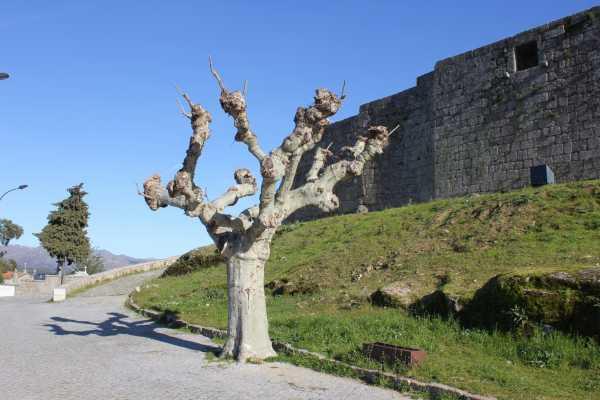 Lisbon on Wheels Heart of Serra da Estrela - (2 days tour)