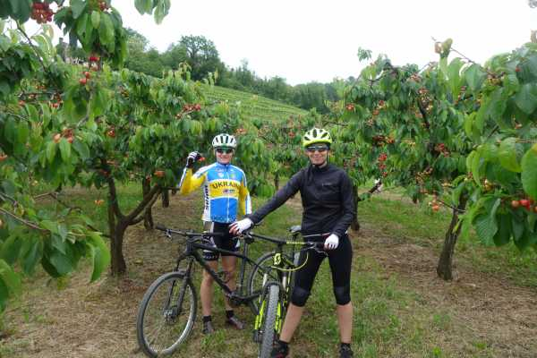 Ride around Goriška Brda s kolesom