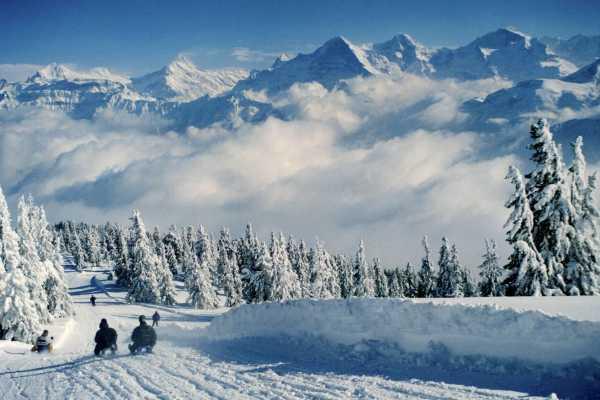 Interlaken Tourismus Schlittelplausch am Niederhorn