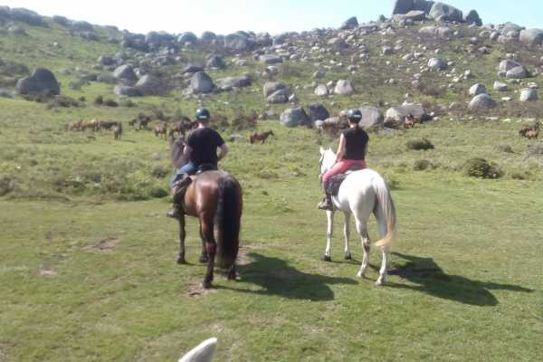 Gerês Holidays 1 day Horse Riding - Castel's Trail