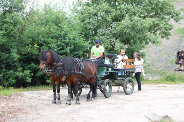 Gerês Holidays carriage tour