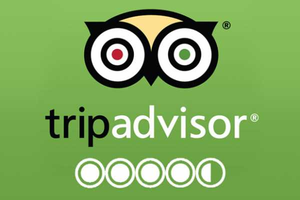 Check Out our Reviews on TripAdvisor