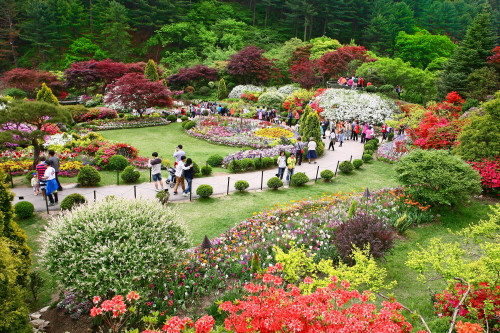 Garden of Morning Calm is one of Korea's major botanical gardens