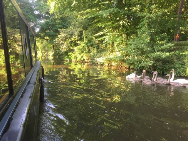 Lancashire Canal Cruises Add Your Experience Here