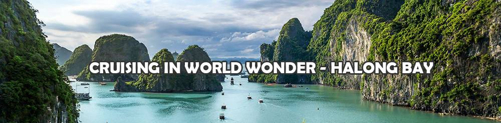 Explore the Magnificent Halong Bay