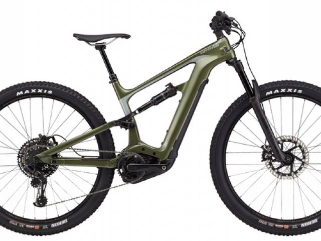 Viking Biking & Hiking Picture gallery: electric city and mountain bikes