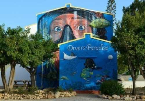 Diver Paradise
