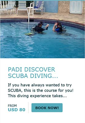 Book Your Discover Scuba Diving Now!