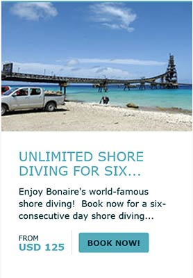 Book Your 6-Day Shore Package Now!