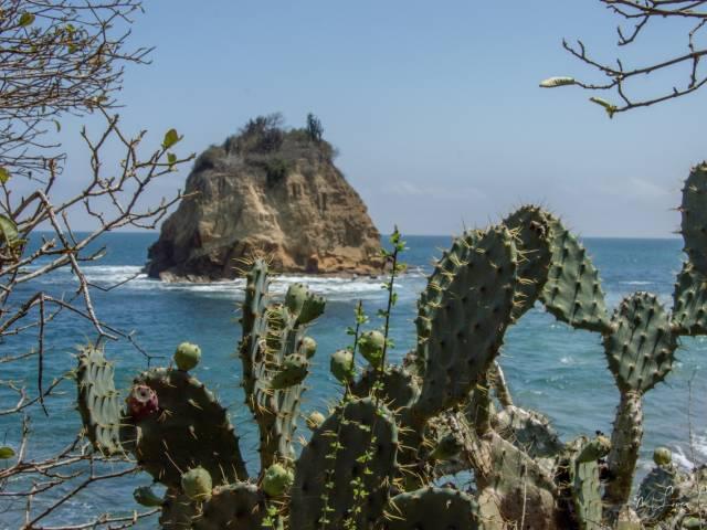 PALO SANTO TRAVEL Playa Los Frailes | Puerto López | Parque Nacional Machalilla