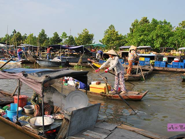 Viet Ventures Co., Ltd Mekong Delta Travel Photo