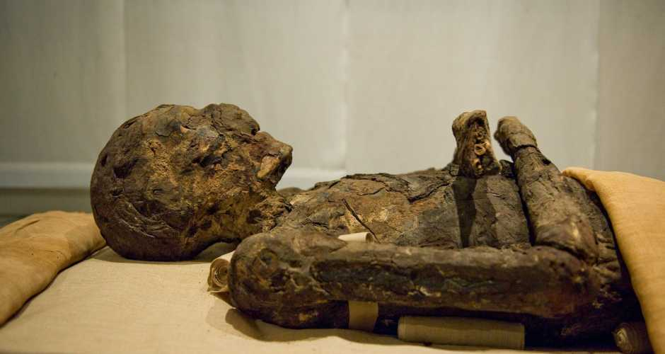 Mummy of Imhotep