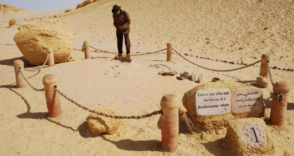 Wadi El Hitan National Park