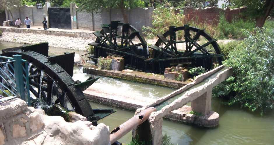 Waterwheels In Fayoum