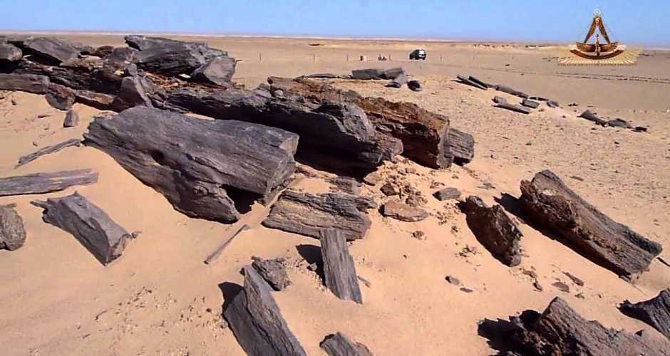 The Petrified Forest Protectorate