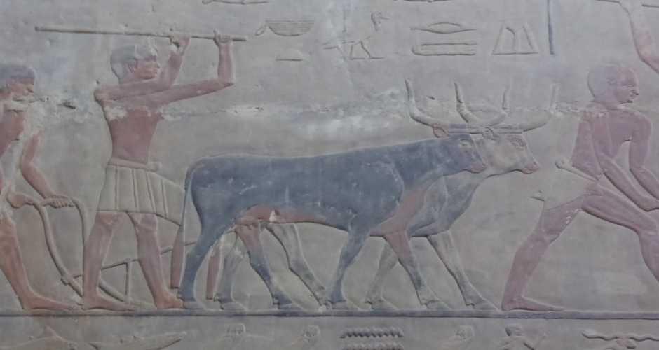 6-The Tomb of Ti