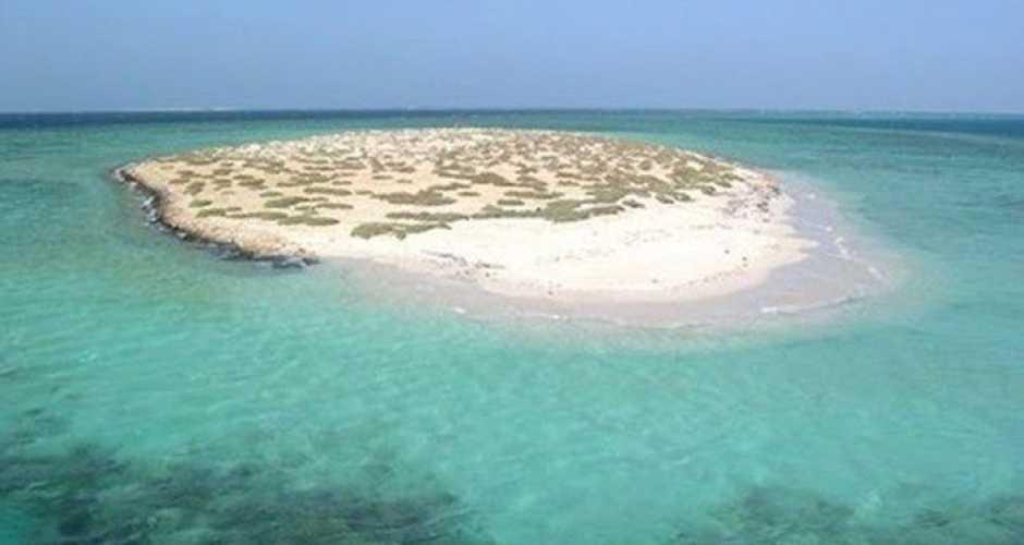 8- Hamata island snorkeling Trip