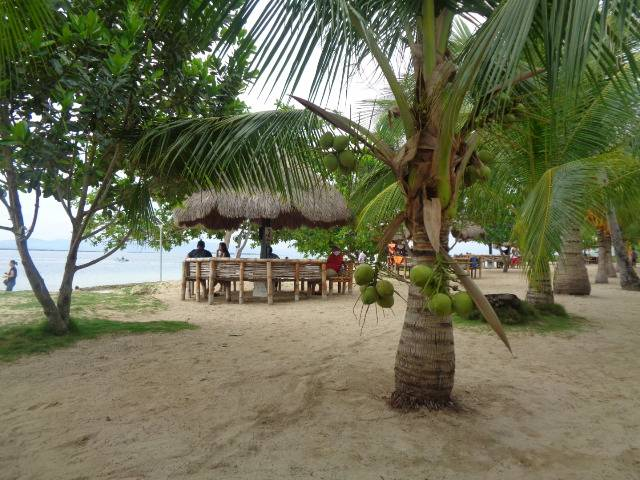 WORLD HOLIDAY TRAVEL AND TOURS Photos in Palawan