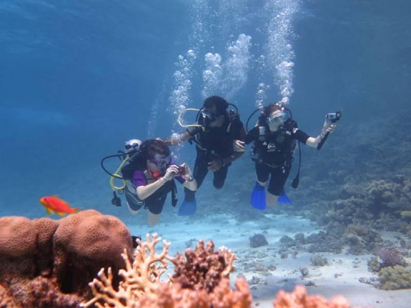 Excursies Egypte Voyages de plongée en apnée à Marsa alam
