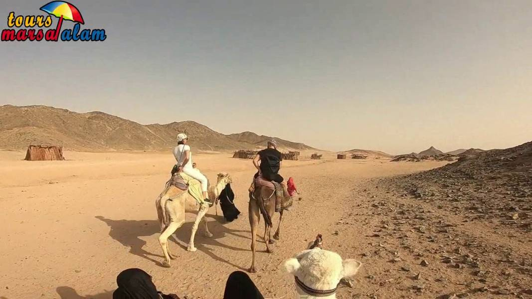 Excursies Egypte Safari Tours From Makadi
