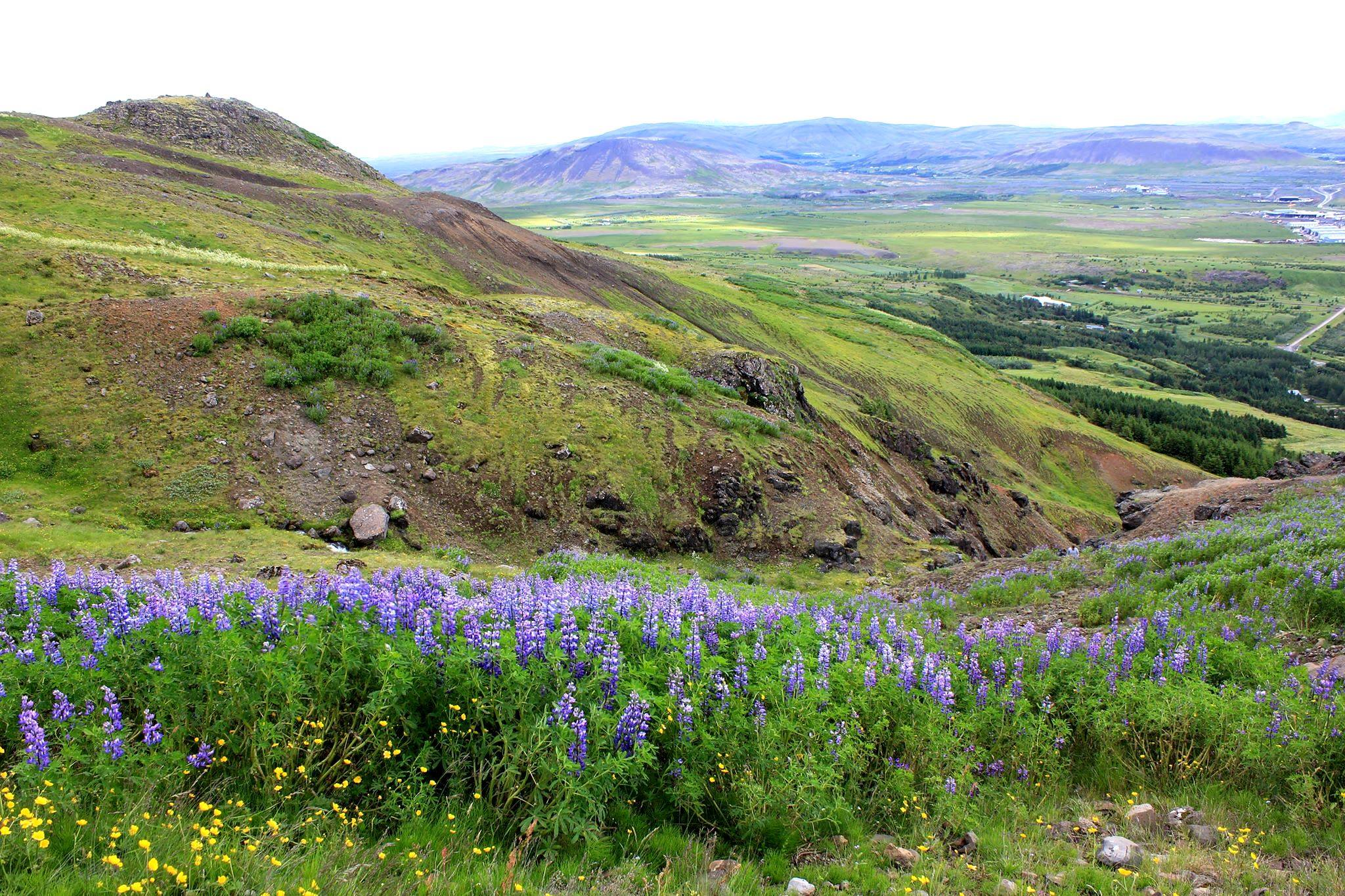 Hike on mount esja - iceland trail