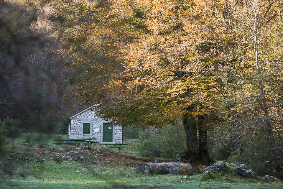 Il Rifugio di Acquasfranatara in Val Fondillo, nel Parco Nazionale d'Abruzzo Lazio e Molise. Prenota qui il tuo soggiorno!
