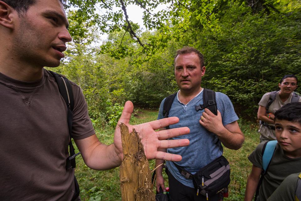 I segni del passaggio dell'Orso lungo la rete sentieristica del Parco