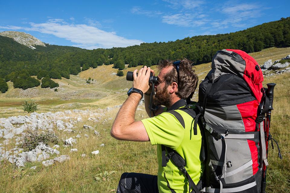 Il territorio del Parco d'Abruzzo offre occasioni uniche per l'osservazione in natura