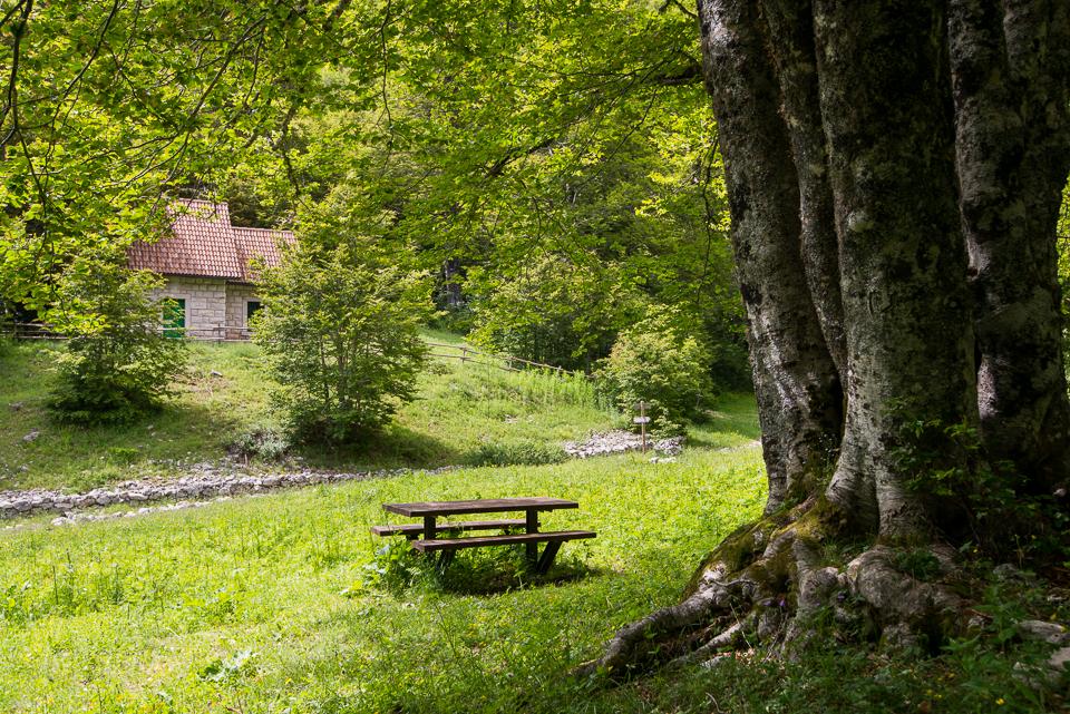 Il Rifugio di Prato Rosso a Pescasseroli, nel Parco Nazionale d'Abruzzo Lazio e Molise. Prenota qui il tuo soggiorno!