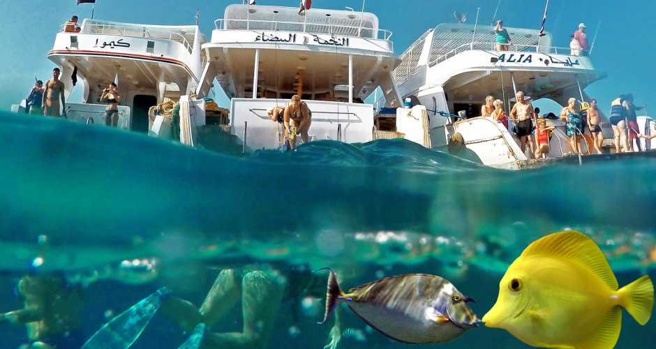 Snorklingsturer från Hurghada